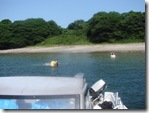 20091年桂島へ海水浴