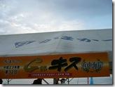 G杯2011