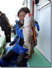 shimataka真鱈