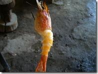 オニテナガエビ塩焼き