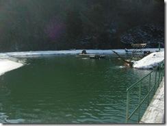 釜房管理釣り場
