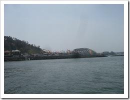 七ヶ浜鯉のぼり