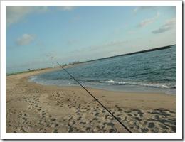 投げ釣り2007.6.17G杯 (13)