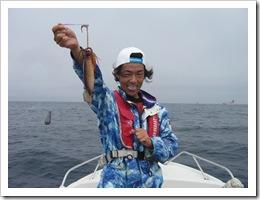 仙台湾でイカ釣り