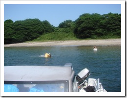 2009年海水浴