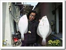 イシガレイ釣り